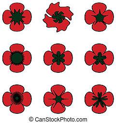 Poppies set