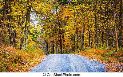 Autumn color along a dirt road in Frederick County,...