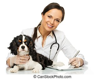 Young positive brunette veterinary woman with spaniel taking...