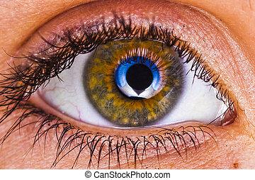 Eyeball Macro