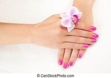 Cor-de-rosa, manicure, branca
