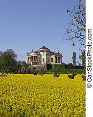 Wonderful palladian Villa called LA ROTONDA in Vicenza 14 -...