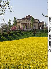 11, città, rotonda, Neoclassico, italia, villa, la, vicenza,...