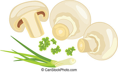 Mushrooms with parsley and chives. Vector illustration