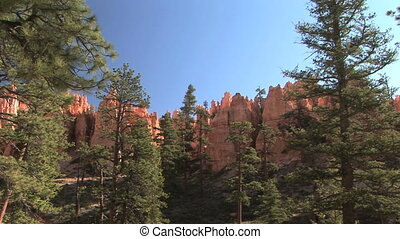 Bryce Canyon National Park - Looking up at the spires at...