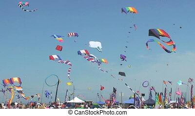 Kite Flying Festival - Kites flying over Washington State...