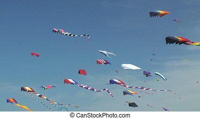 Kites Flying - Kites flying, Long Beach, Washington State...