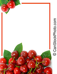 Ripe sweet cherries with copy space