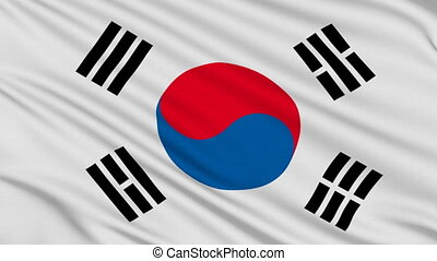 South Korean flag, with real structure of a fabric