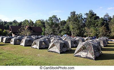 camping tents on the grass in the mountains