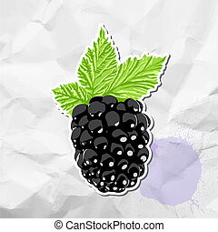 Ripe blackberry on crumpled paper