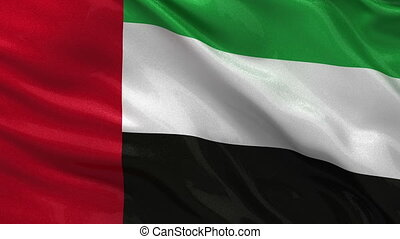 Flag of the United Arab Emirates gently waving in the wind....