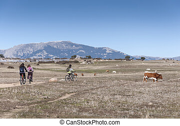 Children cycling in nature
