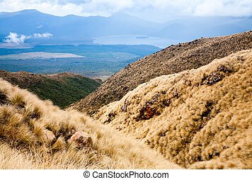 Tongariro National Park in New Zealand - View from public...