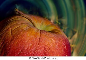 Red apple - Shrunken red apple on colorful circularly...