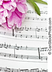 Sheet Music - Stained vintage sheet music and peonies