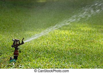 lawn sprinkler - Lawn sprinkler spraying the green grass...