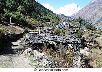 Farmhouses in village in Nepal