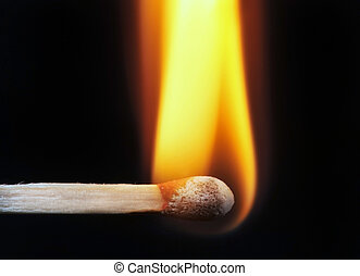 Match Stick - Ignited Match Stick