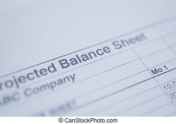 Percentage total - financial balance sheet with 100
