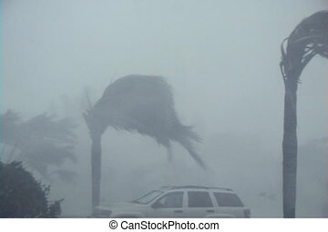 Hurricane: Wind and Rain - 100 MPH+ Hurricane winds and rain...