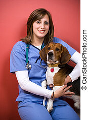 veterinário, com, beagle