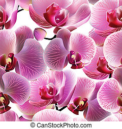 Orchid seamless pattern. Vector, EPS10 - Orchid seamless...