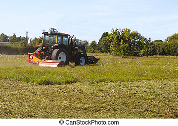 tractor mows the lawn