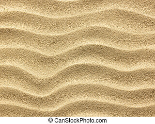 beach sand background - close up view beach sand background