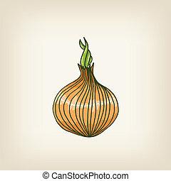 vector shiny hand drawn onion - Cute vector shiny hand drawn...