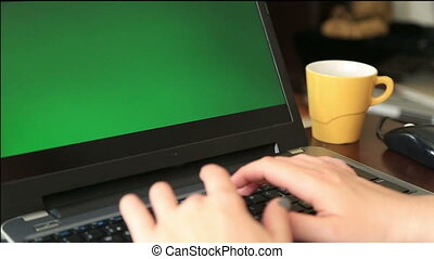 Woman working Chromakey laptop - Woman working with green...