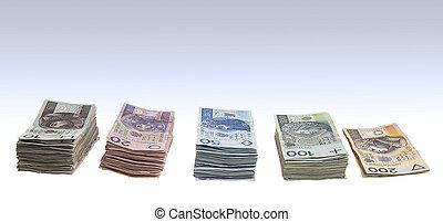 Stacks of polish zlotys