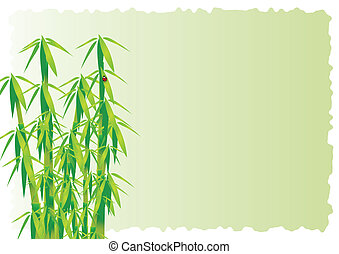 Bamboo decorative element vector background