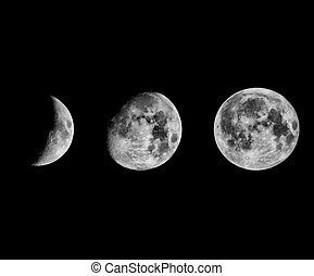 Moon phases - Phases of the Moon seen with telescope in...