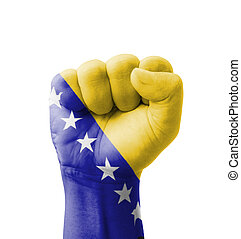 Fist of Bosnia and Herzegovina flag painted, multi purpose...