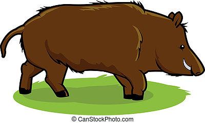 Wild boar - A wild boar in the woods.