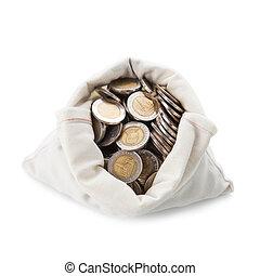 Money Bag on white background