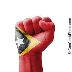 Fist of Timor-Leste flag painted, multi purpose concept -...