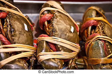 Giant mud crab for meal time