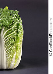 Chinese Cabbage on gray background ready for your type.