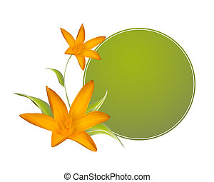 Crocus spring flowers for your card design - Crocus spring...