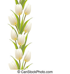 Tulip, floral background, seamless pattern illustration