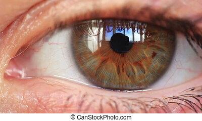 Young woman eye closeup.