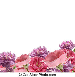 carnations and roses border - pink carnations and roses...