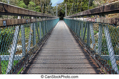 Bridge in a New Zealand rainforest around an old glacial...