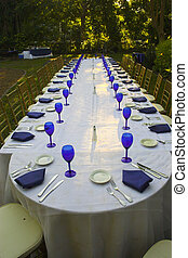 Reception display - Table set up with blue accessories for...