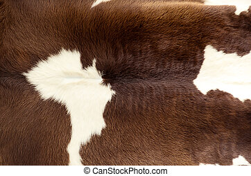 skin of a cow - Close up of fur skin, brown cow. For...