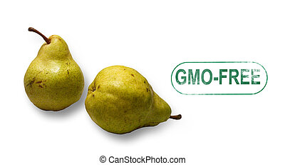 Pears gmo-free stamp isolated on white