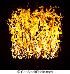 flames of a fire in the dark - The close-up of yellow fire...