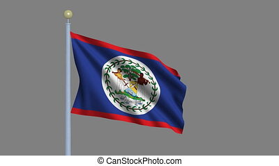 Flag of Belize with alpha matte - Flag of Belize waving in...